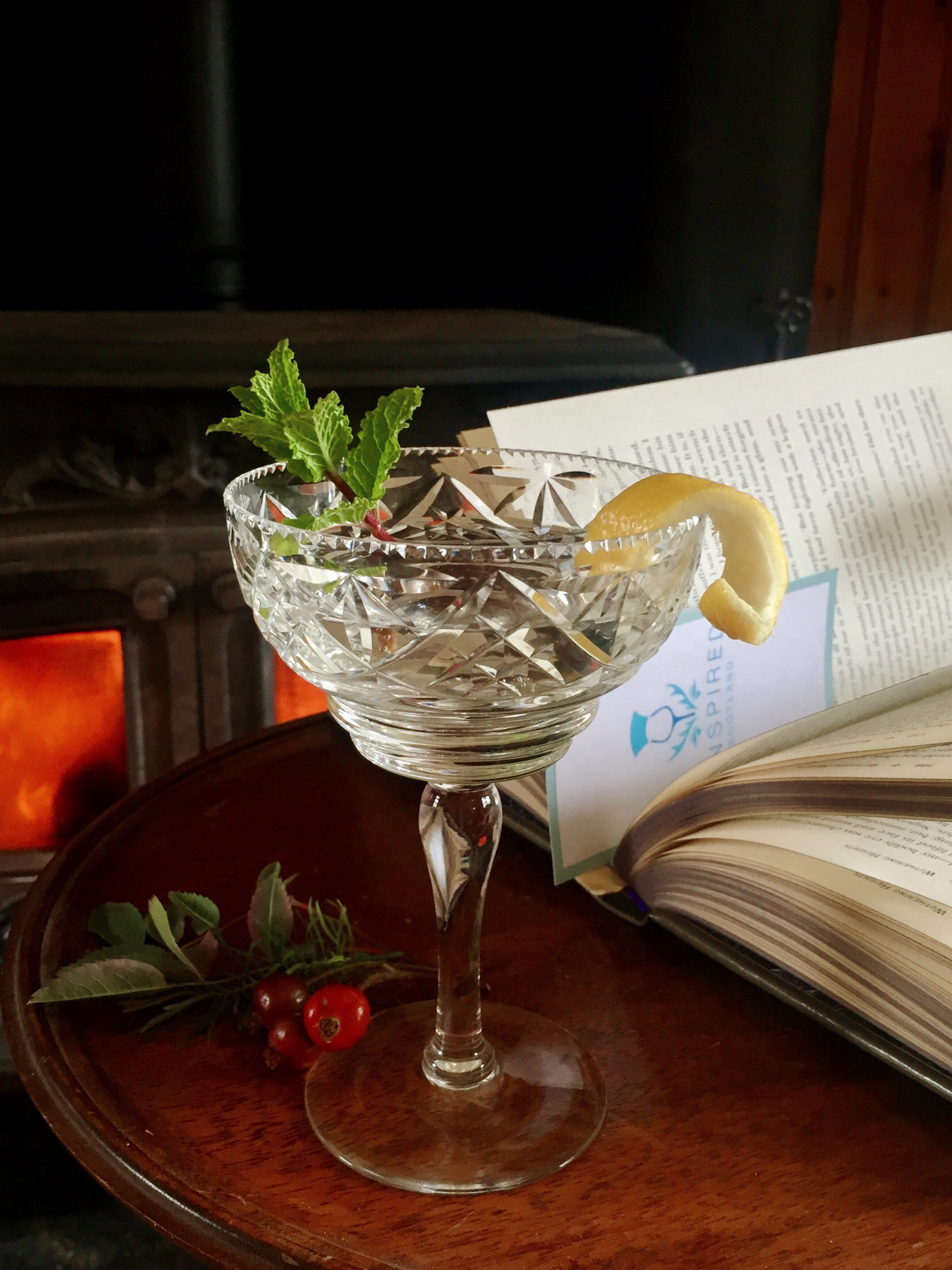 Crystal gin with book on table
