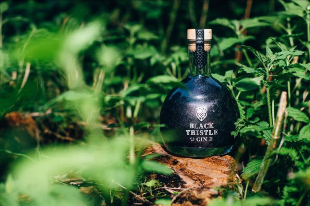 A bottle Black Shimmer Scottish Gin surrounded by the forest